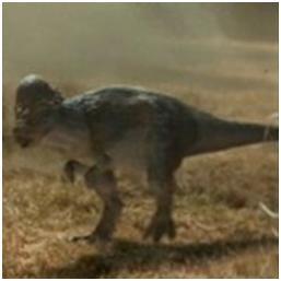 paquicefalossauro2