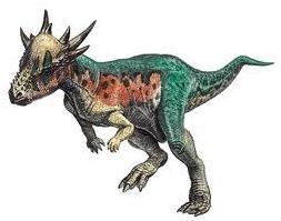 paquicefalossauro4