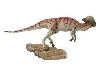 paquicefalossauro5