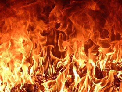 fogo(1)